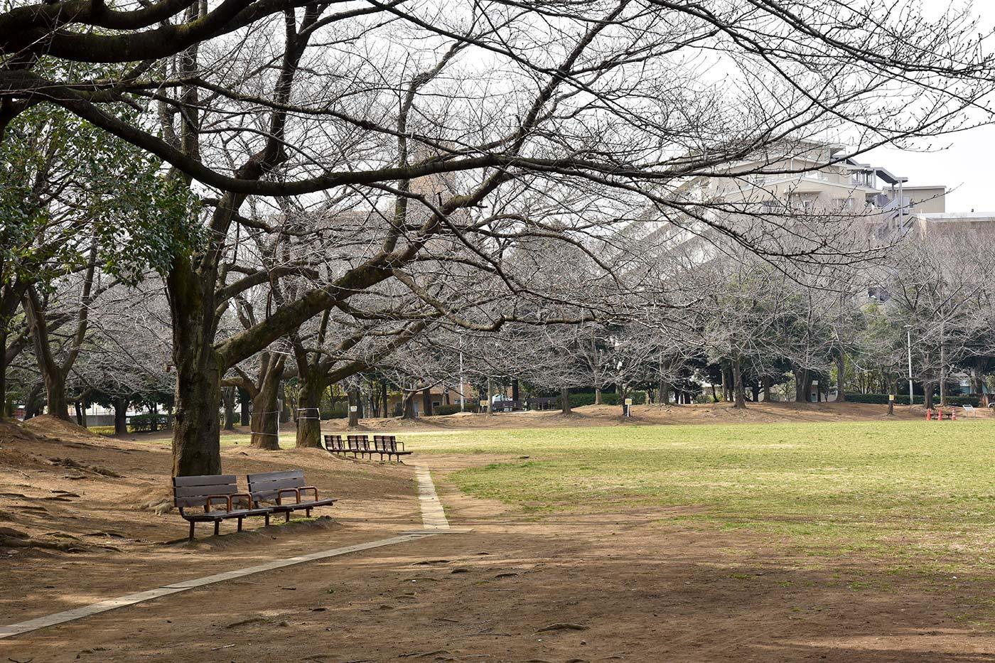 nishikawa_025