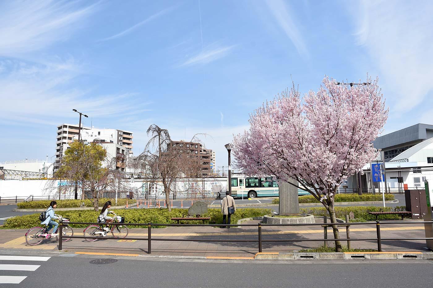 hmurayama_008