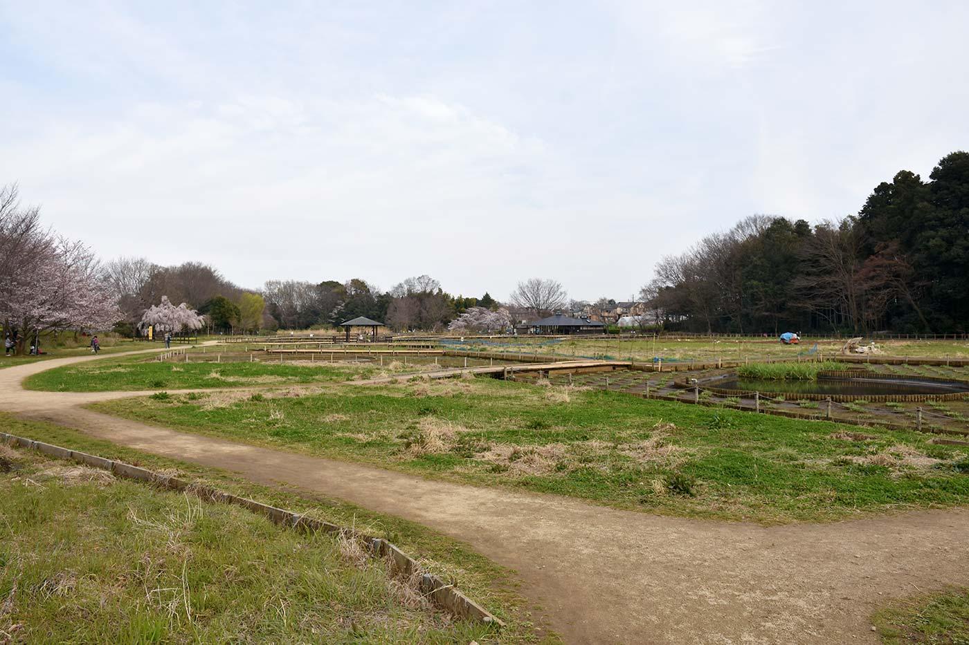 hmurayama_015