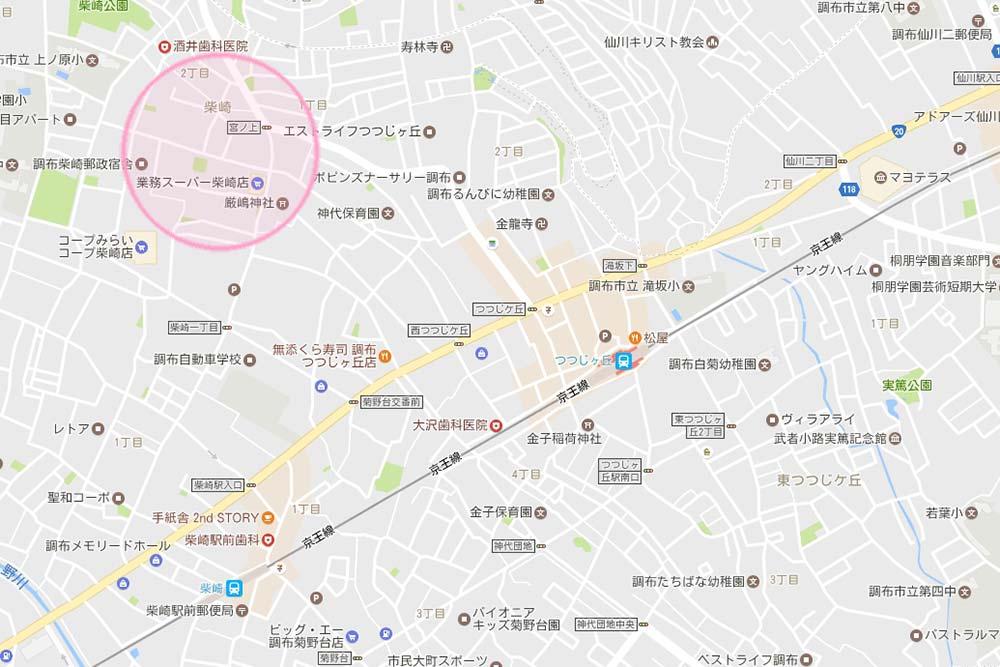 tsutsuji_010